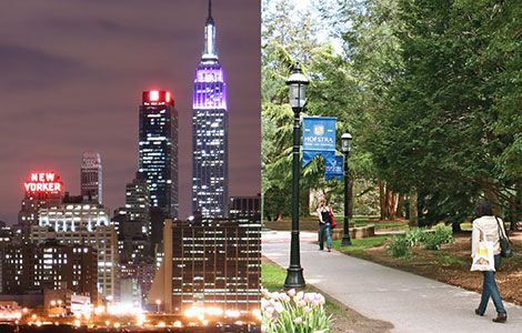 Photos of NYC and the Hofstra Campus